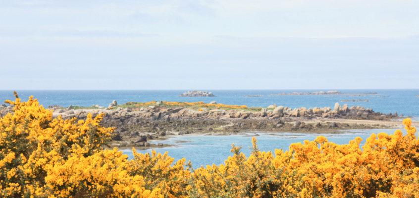 Une journée de printemps sur l'archipel de Chausey