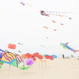 Vole, vole, joli cerf-volant – Rencontres internationales de Berck-sur-Mer