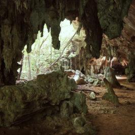 Cuba : Parc National de Caguanes