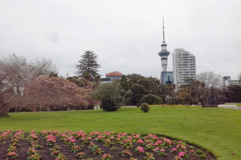 lieu de rencontre Auckland