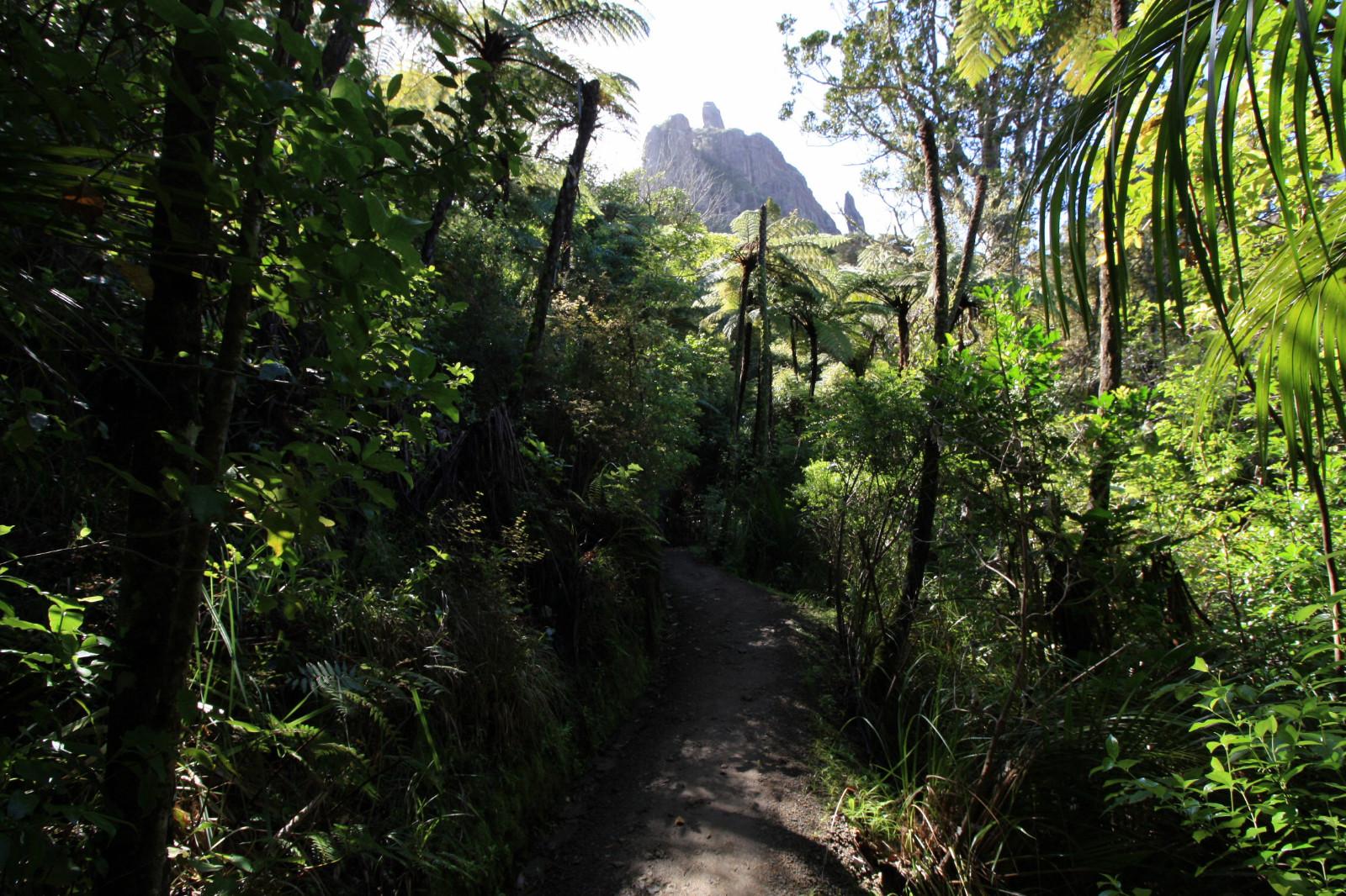 Rando Mont Manaia Northland Nouvelle Zélande