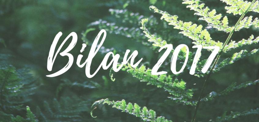 2017 : l'heure de réaliser son rêve