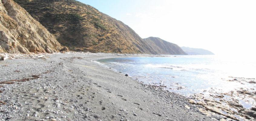 Makara beach, balade entre mer et falaises à deux pas de Wellington