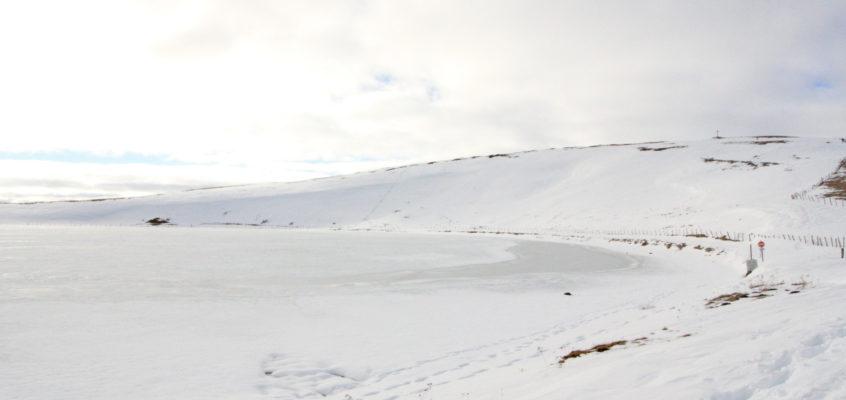 Cézallier blanc : La Godivelle sous la neige