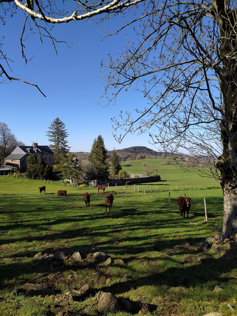 Balade en Auvergne en poussette à Besse